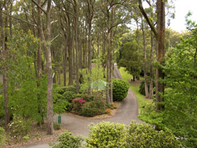 Mount Lofty Botanic Garden - Accommodation Port Hedland