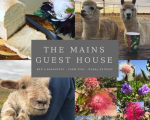 The Mains Guest House - Accommodation Port Hedland
